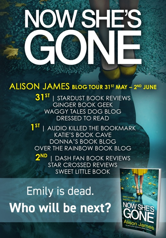 Now She's Gone - Blog Tour