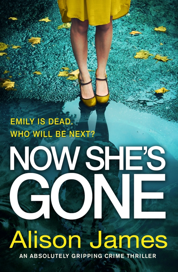 Now-Shes-Gone-Kindle