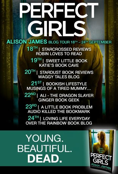 Perfect Girls - Blog Tour