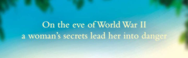Summer of Secrets Banner 2