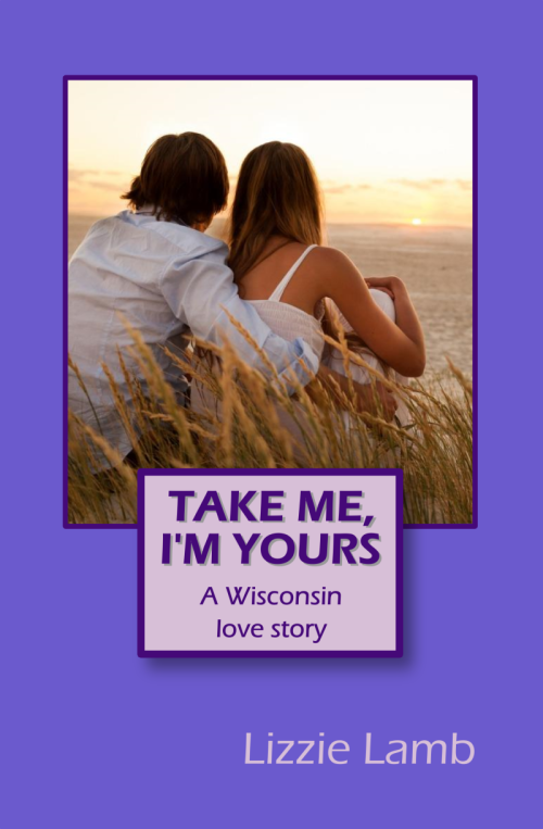 Take Me I'm Yours - TMIY front cover 800px