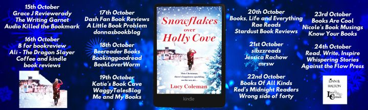 Snowflakes Over Holly Cove Full Tour Banner